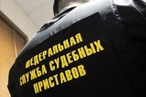 Количество невыездных петербуржцев выросло за год на 30%