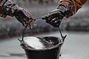 Мировые цены на нефть бьют годовые максимумы