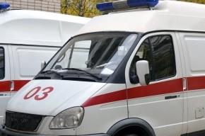 Труп студента с пакетом на голове нашли в Альпийском переулке