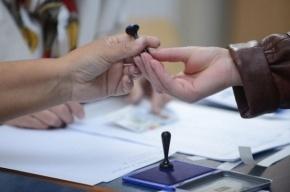 Москалькова предложила способ избавиться от «каруселей» на выборах