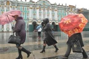 Штормовой ветер будет сбивать петербуржцев с ног