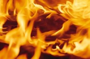 Кирпичный гараж тушили пожарные на Лапинском проспекте