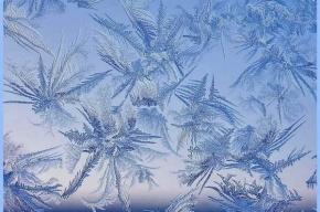 Дед Мороз заявил, что не замораживал строительство «Зенит-Арены»