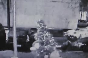 Похитительницу новогодней елки в Москве нашли по следу от игрушек