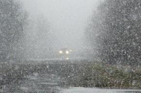 Вечером в Петербурге синоптики ждут мокрый снег и сильный ветер