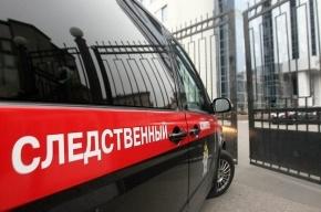 СК выясняет причины гибели босой женщины в подъезде на Выборгском шоссе