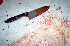 Петербуржец ответит за ранение ножом полицейских