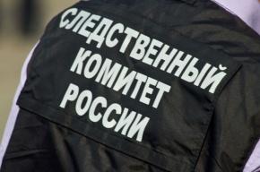 Поджигатель под Смоленском обстрелял спасателей, прибывших тушить пожар