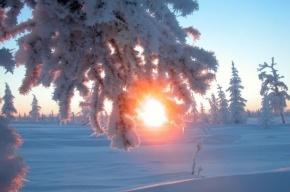 Самый короткий день в году настал в Петербурге
