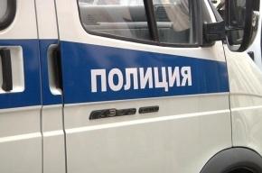Обезглавленные останки человека нашли у станции Рощино