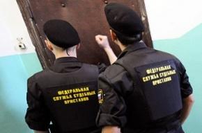 Петербурженка за неуплату алиментов проведет 40 часов на обязательных работах