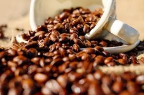 Ученые узнали, почему мужчинам стоит пить кофе перед сексом