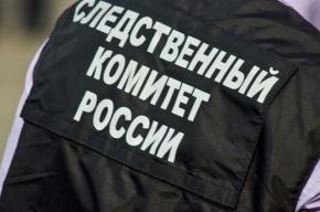 Рецидивист изнасиловал в Петербурге 77-летнюю женщину