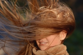 Крепкий ветер похозяйничает в Петербурге
