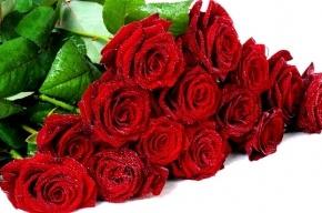 Петербургские приставы выманили должника букетом роз