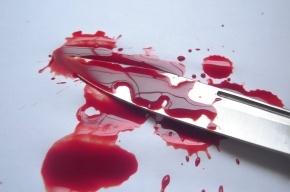 Прохожий в центре Петербурга ударил девушку ножом в живот