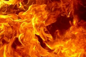 Администрацию Пушкинского района спасали утром от огня
