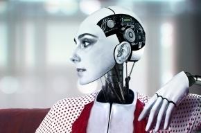 Роботизированные жены и мужья через 15 лет заменят людям настоящих