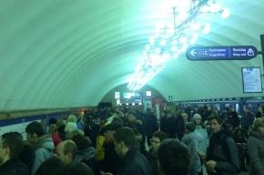 Неисправность оборудования на «Парнасе» стала причиной давки на станциях метро