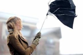 Сильный ветер снова задует в Петербурге