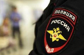 Школьницу изнасиловали на берегу пруда в Ломоносове