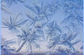 Мороз, солнце и гололед ожидаются в Петербурге