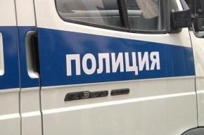 Жителя Ленобласти задержали за инцест с племянницей