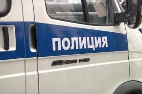 Развратник с крючковатым носом напал на школьницу на улице Пестеля