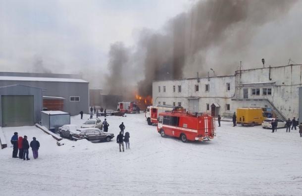Поддоны горели на улице Бехтерева: есть пострадавшие