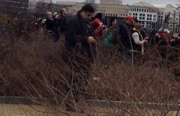 Саакашвили обижен на журналистов из-за фото «в кустах» на инаугурации Трампа