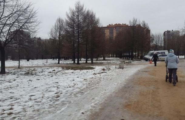 Труп мужчины нашли в парке в Купчино