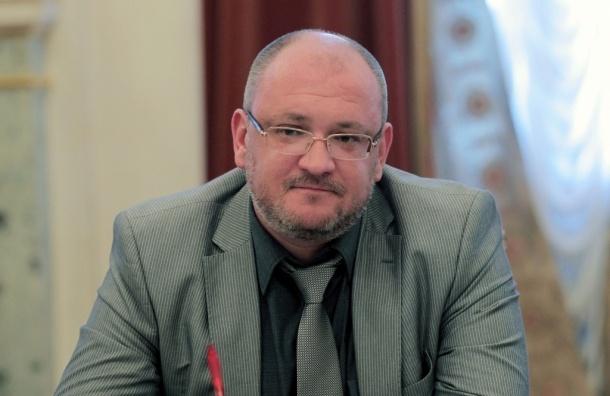 Резник обвинил Кукушкину в воспрепятствовании депутатской деятельности