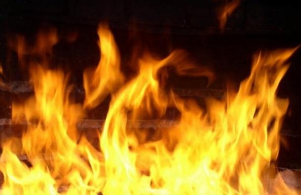 Родители малолетних детей заживо сгорели на их глазах в пожаре в Ленобласти