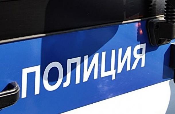 Школьник из Томска пожаловался в полицию Петербурга на активиста за доносы на учителей