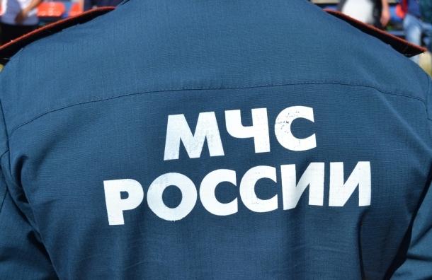 Спасатели ищут любителя подводной охоты в Красносельском районе
