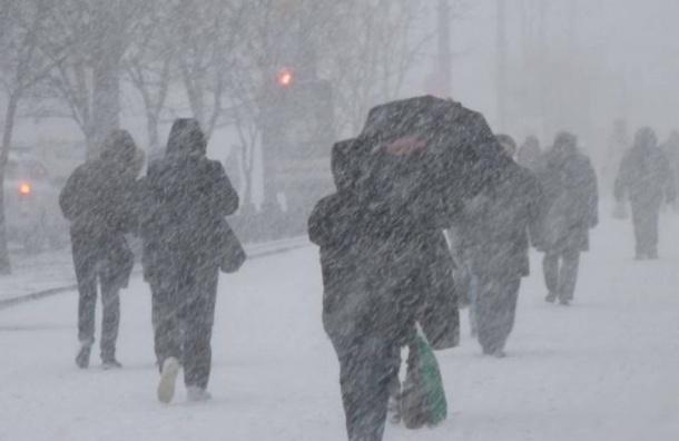 Спасатели предупредили о сильном ветре и гололедице в Петербурге