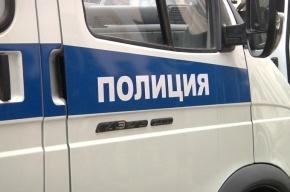Полицейский в Петербурге с помощью выстрела спас машину от нападения