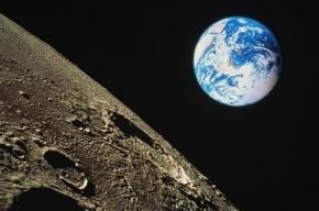Позвоночник инопланетянина нашли на Луне