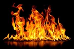 Квартира горела на проспекте Большевиков