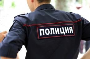 Няню-развратительницу ищут в Петербурге