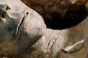 Мумифицированное тело в камуфляже нашли в бараке у кольцевой