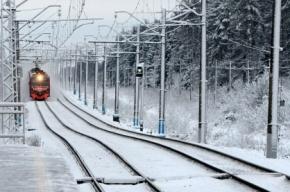 Погибшая в Комарово не слышала поезд из-за наушников
