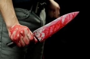 Неизвестный напал с ножом на девушку в парадной на Васильевском острове
