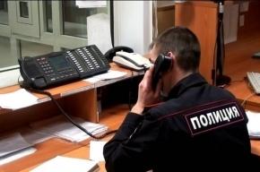 Восьмиклассница сбежала из дома в Красносельском районе