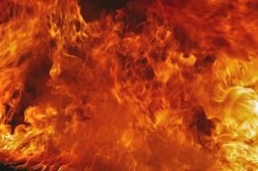 Частный дом сгорел в Усть-Ижоре