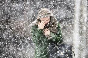Петербург завалит снегом в  выходные