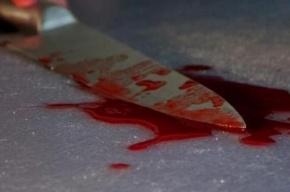 Петербургская пенсионерка ножом порезала сына вместе с любовницей