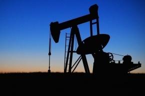 Россия начала сокращать добычу нефти