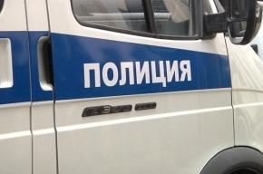 Восьмиклассницу изнасиловали в Красногвардейском районе