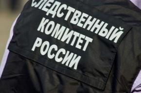 СК возбудил дело против пяти россиян, вступивших в «Правый сектор»